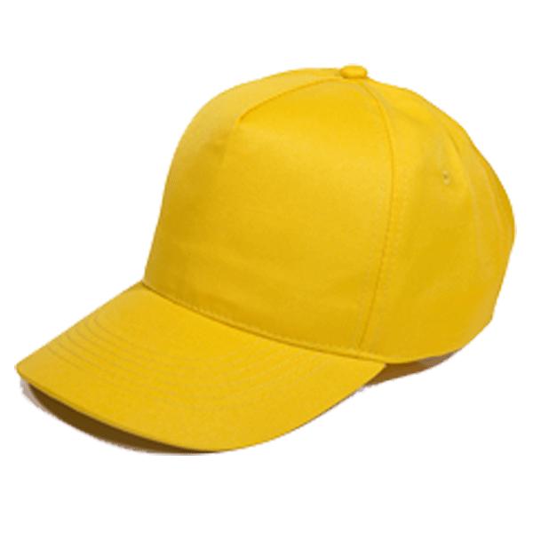 BUDGET 5 PANEL POLYESTER CAP