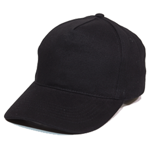 BUDGET 5 PANEL HEAVY BRUSHED COTTON CAP