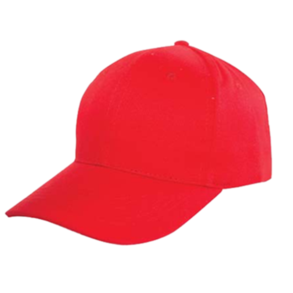 BUDGET 6 PANEL HEAVY BRUSHED COTTON CAP